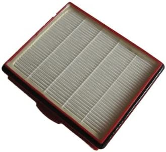 1 filtro HEPA Adecuado para Lux D 820 de polvo bolsa de profesional®: Amazon.es: Hogar