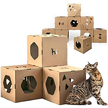 Amazon.com: PETIQUE Feline Penthouse Casa para gatos: Mascotas