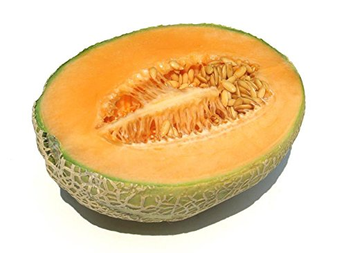 Cantaloupe, Hales Best Jumbo, 20 Seeds! Groco (Hales Best Cantaloupe Seed)