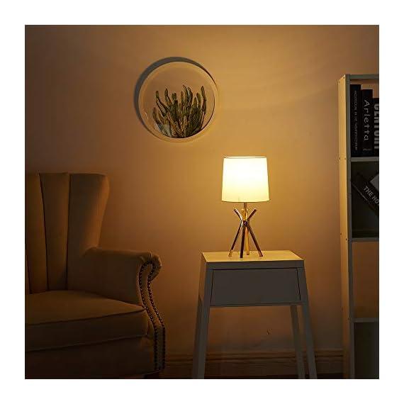 CASILVON Table Lamp YTL009G-2N (Rose) -  - lamps, bedroom-decor, bedroom - 41NX6b11hDL. SS570  -