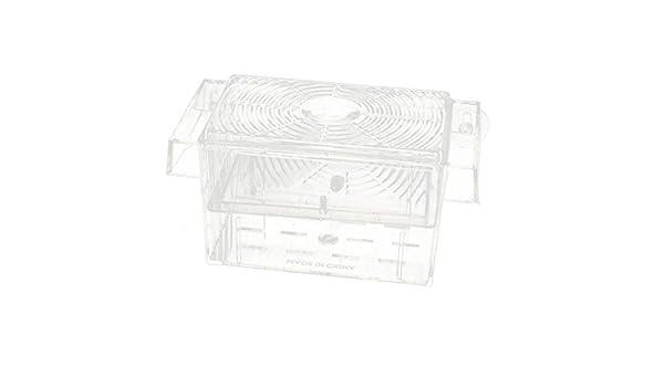 Amazon.com : eDealMax acuario fritura de pescado Camarones Cría ...