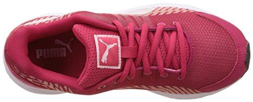 Puma Sequence V2 Jr - Zapatillas Unisex Niños Rosa - Pink (rose red-pink dogwood 03)