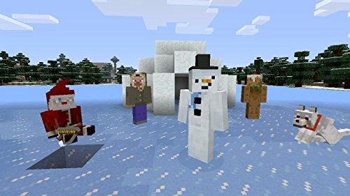 Minecraft - DLC,  Festive Skin Pack - Wii U [Digital Code] by Mojang AB (Image #6)