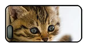 Hipster iphone 5 cases design Cute kitten close up photography eyes beard close up PC Black for Apple iPhone 5/5S