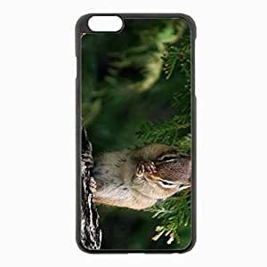 iPhone 6 Plus Black Hardshell Case 5.5inch - squirrel branch sitting tree Desin Images Protector Back Cover