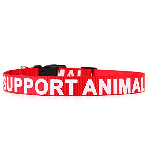(Plutus Pet Support Animal Collar,Printed in Large Letters on Nylon Webbing,Prevents Accidents by Warning Others of Your Dog in Advance,Two Colors,Four Sizes,Neck 10-16 inch,Small,Red)
