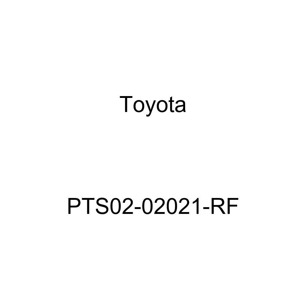 Toyota PTS02-02021-RF Door Piece Molded