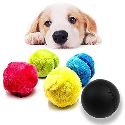 Deaman Juguete de Cuerda Magic Roller Ball Perros – Roller ...