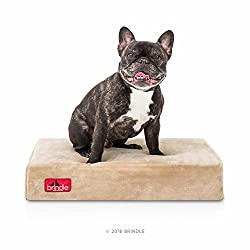 Brindle Soft Velour Pet Bed - Khaki - 22in x 16in