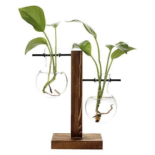 (ADSRO Stand Glass Planter Bulb Vase, Glass Flowerpot with Vintage Wood Frame Holder for Hydroponic Plant Family Garden Wedding Decoration - (2 Bulb Vase))