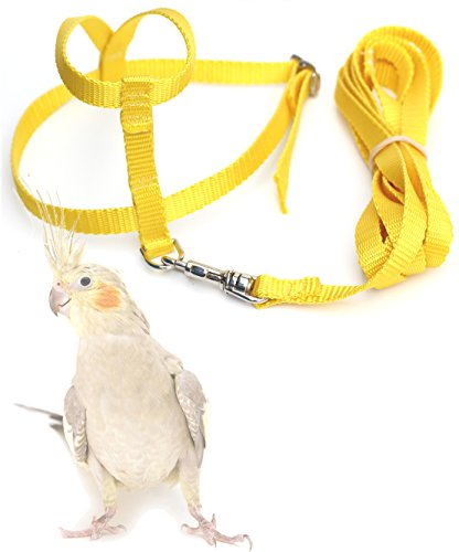 the aviator harness - 4