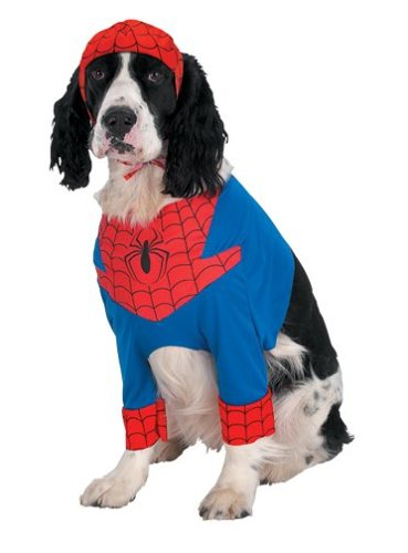 Image result for Spider-Man Pet Costume