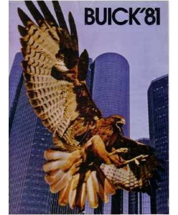 1981 BUICK Sales Brochure Literature Book Piece