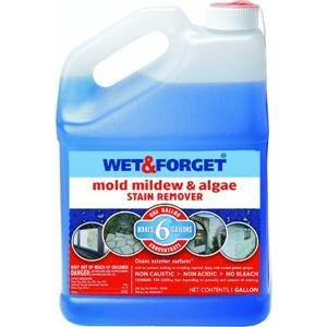 Wet and Forget 800066CA Wet & Forget Moss, Mold, And Mildew Control
