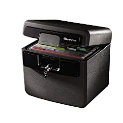 2. SentrySafe Fire and Water Safe, Fire Resistant File Safe, 0.65 Cubic Feet