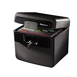 SentrySafe Fire and Water Safe, Fire Resistant File Safe, 0.65 Cubic Feet, HD4100