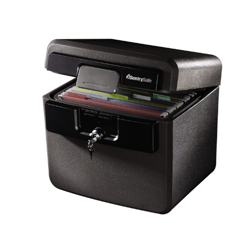 SentrySafe HD4100CG Fire and Water Safe, Fire Resistant File Safe, 0.65 Cubic Feet, HD4100