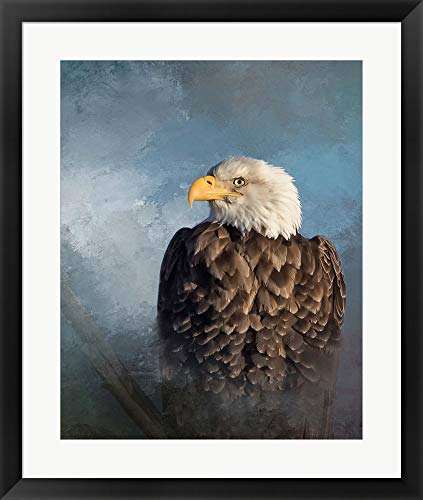 Bald Eagle by Larry McFerrin Framed Art Print Wall Picture, Black Frame, 24 x 29 inches ()