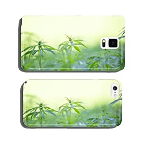 Young cannabis plants, marijuana cell phone cover case Samsung S6