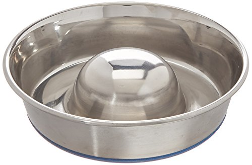 OurPets Premium DuraPet Slow Feed Dog Bowl Small by OurPets