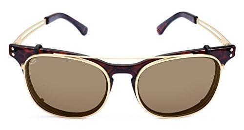 Serengeti 8082 Enzo Sunglass, Shiny Dark Tort Frame Lens, Polar PHD Drivers ()