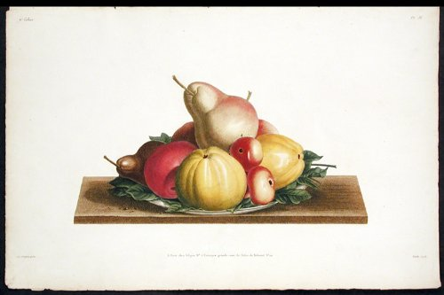 [Still Life with Fruit] Assiette de Bon-Chretien, Calville blanc...