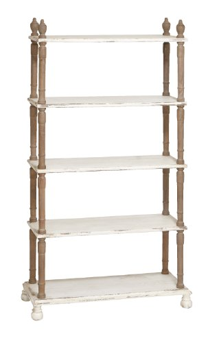 Benzara Weather Resistant 5-Tier Wooden Shelf, White by Benzara (BENZD)