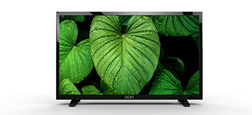 Seiki SE19HL 19-Inch 720p LED TV (2015 Model)