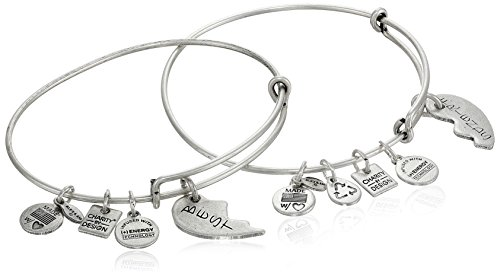"Alex and Ani ""Charity by Design"" Best Friends Rafaelian Silver-Tone Bangle Bracelet, Set of 2"