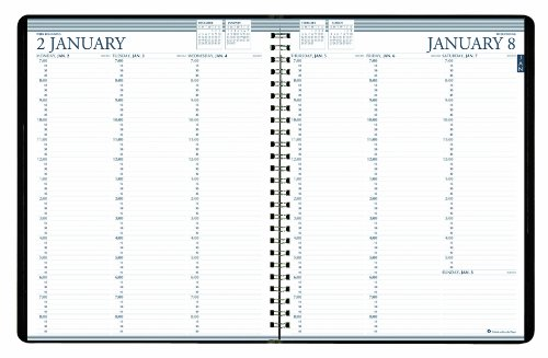 House of Doolittle Professional Weekly Planner 12 Months January 2015 to December 2015, 8.5 x 11 Inches, Vertical Format, Recycled (HOD27202-15)