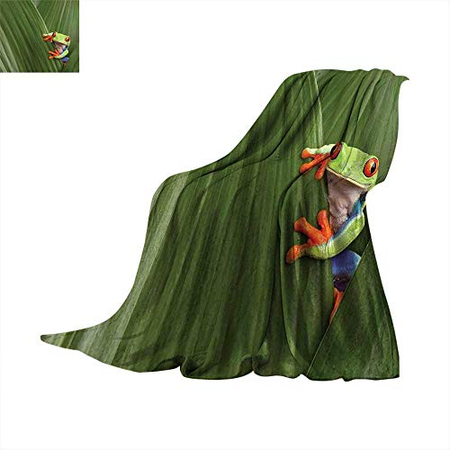 Animal Super Soft Thicken Blanket Red Eyed Tree Frog Hiding in Exotic Macro Leaf in Costa Rica Rainforest Tropical Nature Oversized Travel Throw Cover Blanket 70 x 60 inchGreen