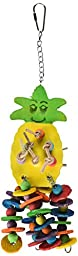 Paradise 4 by 12-Inch Pineapple Pet Toy, Medium
