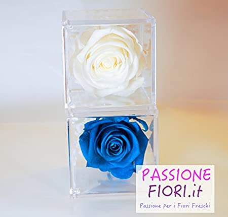 Premium Rose Cube Avec Rose Stabilisee Bleu Ciel Amazon Fr