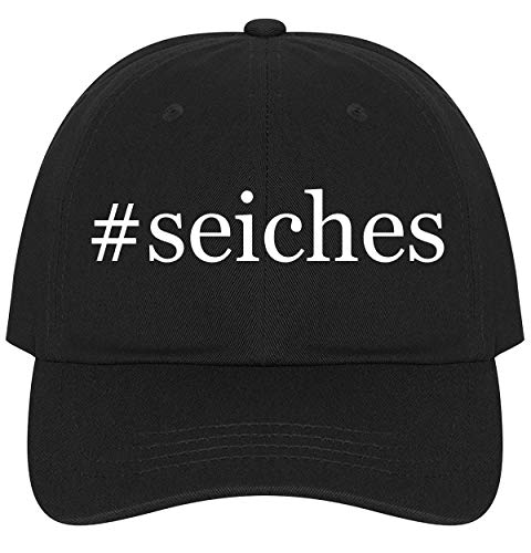 (The Town Butler #Seiches - A Nice Comfortable Adjustable Hashtag Dad Hat Cap, Black)