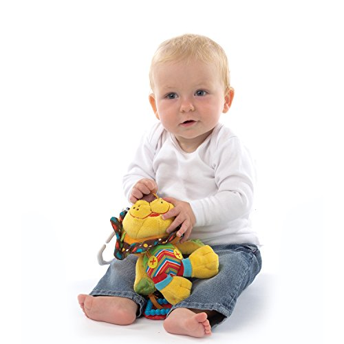 41NZN8Z2cmL - Playgro 0181513 My First Activity Friend for Baby, 10 Inch, Roary Lion