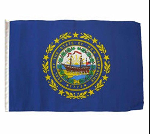 ALBATROS 12 inch x 18 inch State of New Hampshire Sleeve Flag for use on Boat, Car, Garden for Home and Parades, Official Party, All Weather Indoors Outdoors