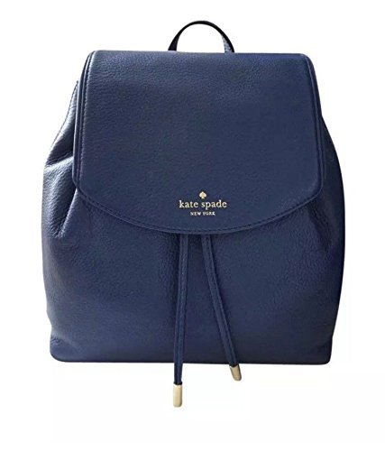 Kate Spade Mulberry Street Small Breezy Backpack Ocean Ice Blue, One - Costs Usps International Shipping