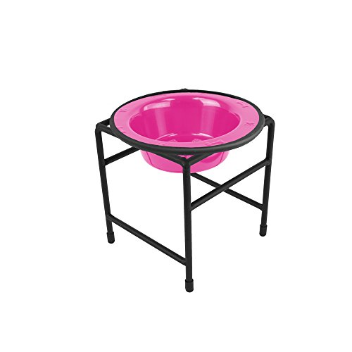 Platinum Pets Modern Single Diner Stand with 6-Ounce Rimmed Bowl, Pink
