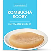Kombucha Scoby & Starter Tea by Joshua Tree Kombucha | (No Vinegar or Artificial Flavors Added!) (Make 1 Quart (1/4 Starter))