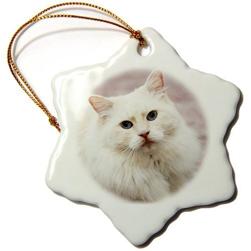 Rag Doll Cat Ornament - Jared Snowflake Ornament Purebred Rag Doll Cat, Flame Point Na02 Pwo0116 Piperanne Worcester Snowflake Ornament, Porcelain, 3-Inch BH567133