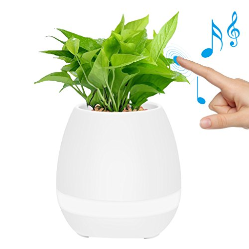 MOVTEKE Bluetooth Speaker Music Flower Pot Rechargable LED Night Light with 7 Soft colors by Playing Piano on a Real Plant Built-in 15 Piano Piece of Melodious - Pot Music