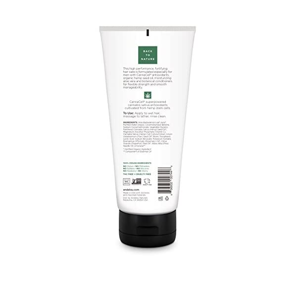 Andalou Naturals Fortifying 3-in1 Shampoo Plus Conditioner for Men, 251 ml