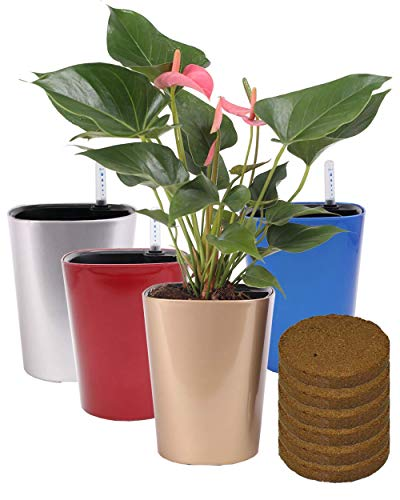 5.5'' Self Watering Planter Pots with 6 Coconut Soil Bricks Foolproof Indoor Home Garden Modern Decorative Pot for All House Plants (4, Blue1 Gold1 Silver1 Red1)