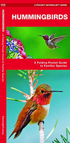- Hummingbirds: A Folding Pocket Guide to Familiar Species (Wildlife and Nature Identification)
