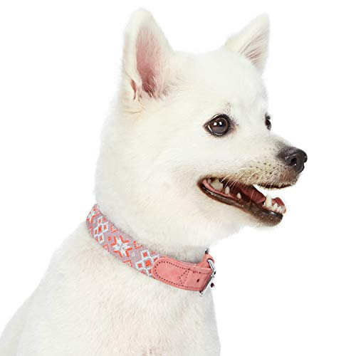 Blueberry Pet 2019 New Modern Tribal Print Thistle Braided Polyester Fabric Webbing and Soft Genuine Leather Dog Collar, Small, Neck 12
