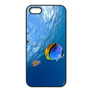 Tropical Fish iPhone 4 4s Cell Phone Case Black Y3392646