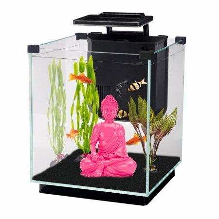 Penn-Plax simplicidad Kit de acuario cubo de vidrio, filtro, control táctil de 3 color LED luz 5,5 L: Amazon.es: Productos para mascotas