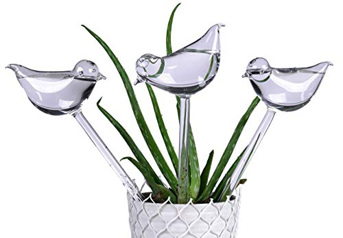 3 Pack Plant Waterer Self Watering Globes,Bird Shape Hand Blown Transparent Mini Durable Clear Glass Aqua Bulbs