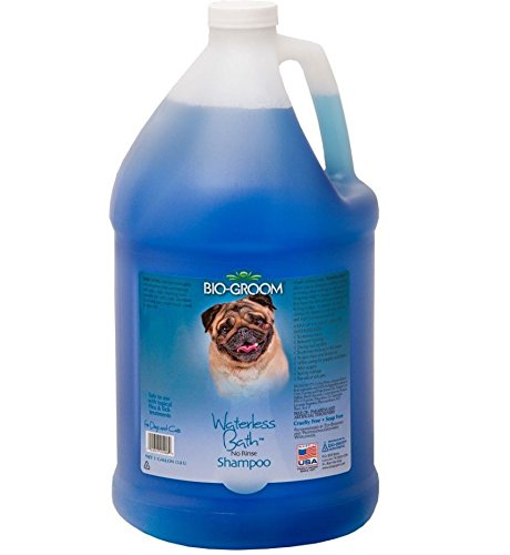 Groom Shampoo (Bio-groom Waterless Cats and Dog Bath Shampoo, 1-Gallon)