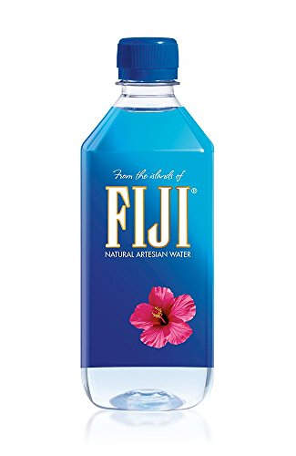 FIJI Natural Artesian Water, 16.9 Fl Oz (Pack of